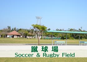 蹴球場(サッカー・ラグビー場)